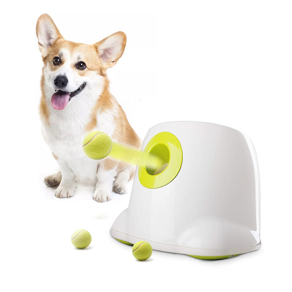 Automatic Ball Launcher (Maxi)