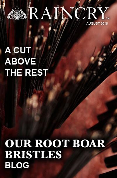 Why Our Root Boar Bristles Are A Cut Above...