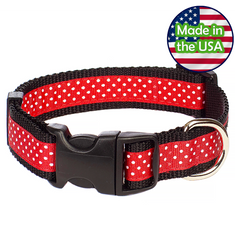 Paw Paws Dog Collar - Pembroke Polka Dot Black & Red Medium