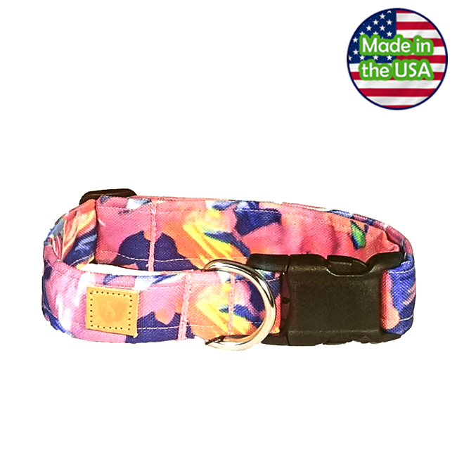 Alpha Pack Unleashed Waterproof Dog Collar - Hawaiian Breeze Large