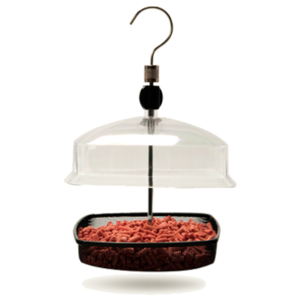 Mealworm To Go® Domed Feeder