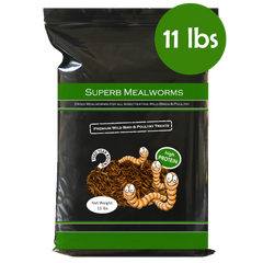 Superb Mealworms® 11 lbs Resealable Bag