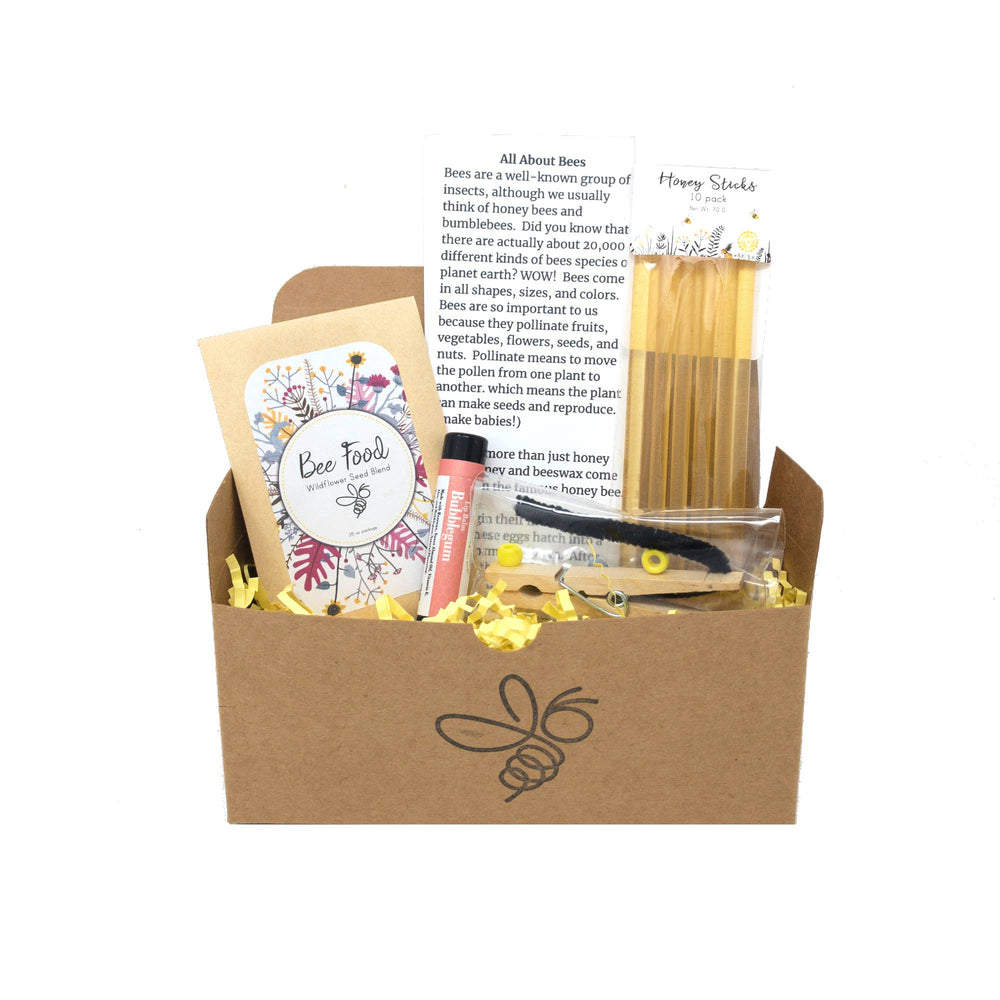 Sister Bees LLC - Busy Bee Kidz Kits