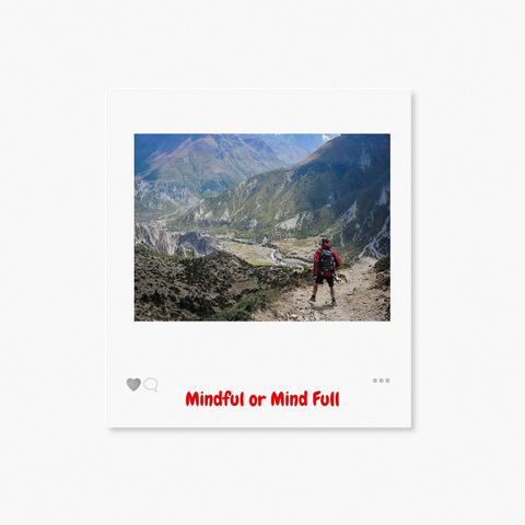Mindful or Mindfull