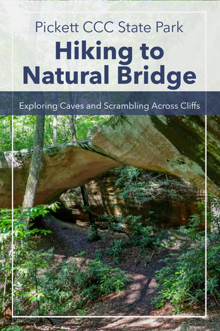 Guide to hiking Natural Bridge Trail in Pickett CCC State Park
