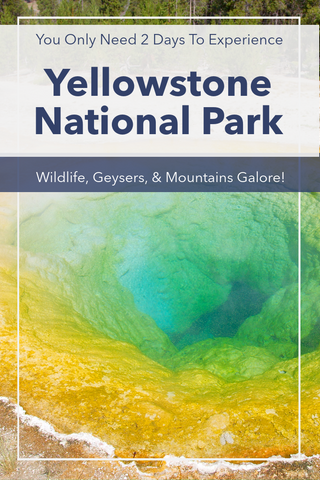 Our Two Day Adventure In Yellowstone