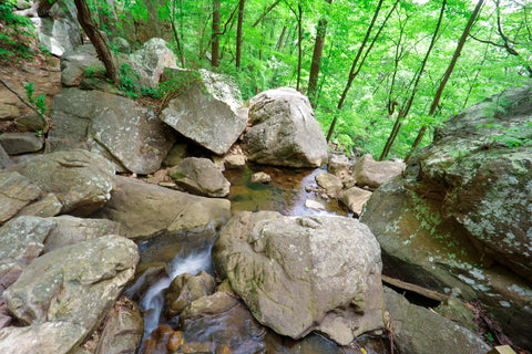 Cascades of Glen falls trail in Lookout Mountain Tennessee