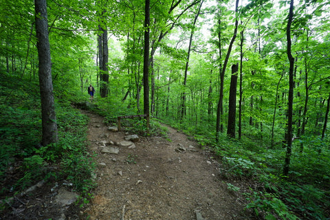 Buffet wall access trail in Denny cove within south Cumberland State Park in Tennessee