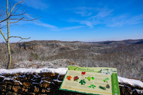 scenic overlook in natural arch scenic area of the daniel boone national forest
