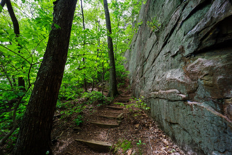 Exit 1 along the climbers loop in foster falls within south Cumberland State Park in Tennessee