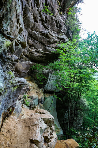 princess arch trail red river gorge