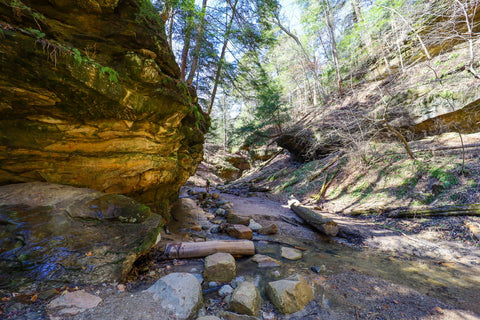 Boulder and log filled stream crossing along trail 3 in Turkey run state park indiana