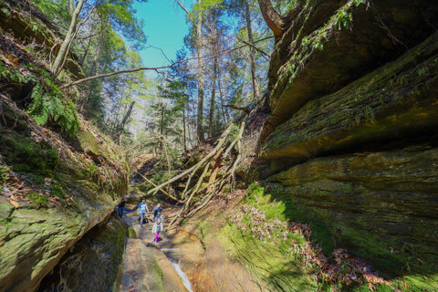 Hiking through stream filled canyons along trail 3 in Turkey run state park indiana