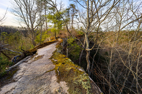 Top view of arch of triumph in red River Gorge Kentucky