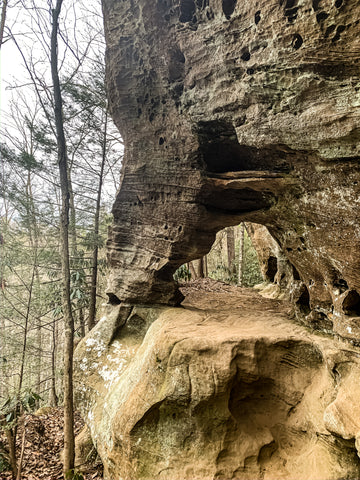 hidden arch trail red river gorge