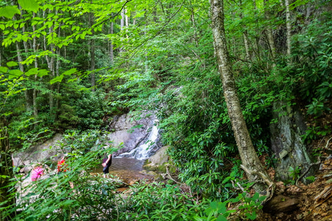 wading pool atop cabin creek falls in grayson highlands state park in virginia