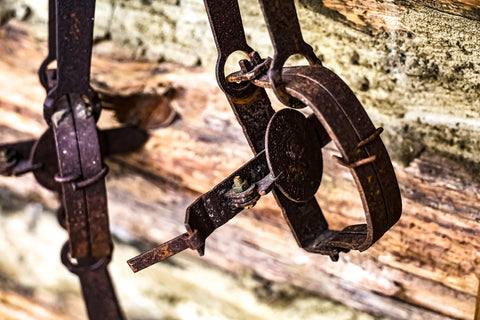 historic trapping tools in o'bannon woods state park farm