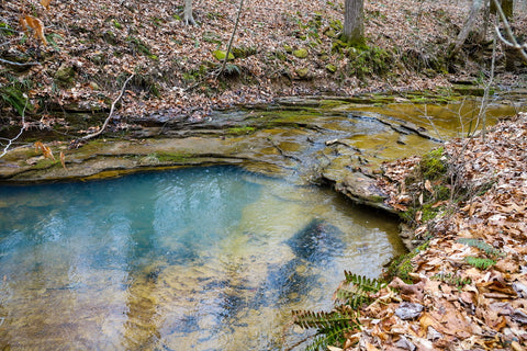Natural pool along stream on hiking trail to ravine arch in yellow birch ravine nature preserve Indiana