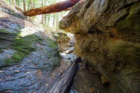 Hiking through the creeks of falls canyon along trail 9 in Turkey Run State Park Indiana