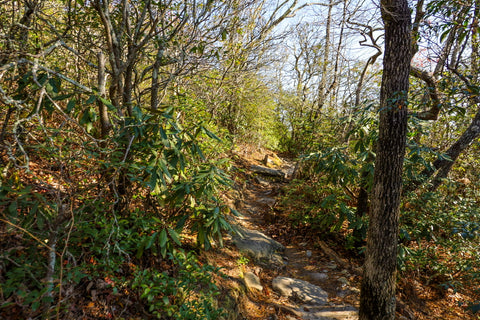 hiking to hawksbill mountain in linville gorge wilderness