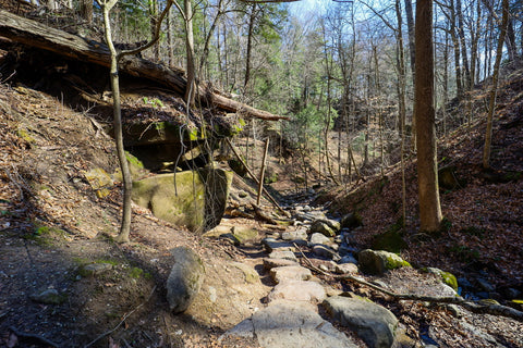 Looking down into boulder canyon along trail 9 in Turkey Run State Park Indiana