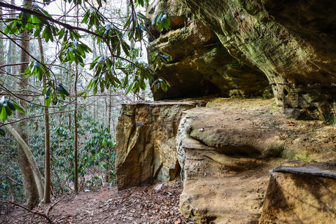 cliffs and rockshelters along henson's arch trail in natural bridge state park kentucky