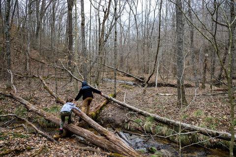 Crossing a creek along trail to bowl falls in yellow birch ravine nature preserve Indiana