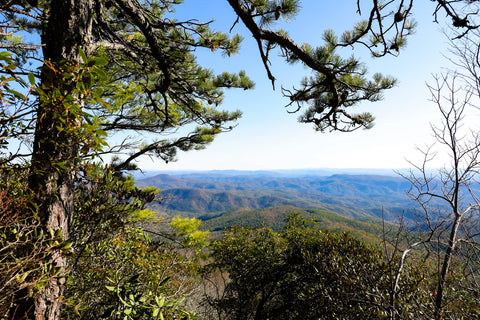 overlook along the hawksbill mountain trail of the north carolina piedmont