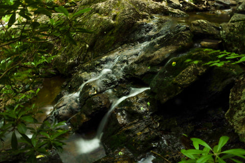 small waterfall along cabin creek trail in grayson highlands state park in virginia
