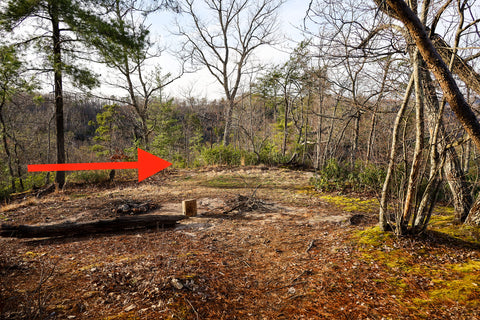 Arrow pointing to hidden path leading to arch of triumph in red River Gorge Kentucky