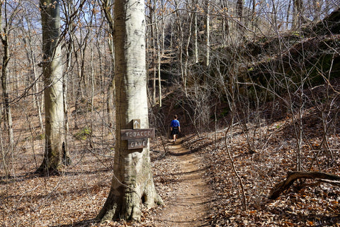trailhead to tobacco cave along the lower trails of jeffreys cliffs in kentucky