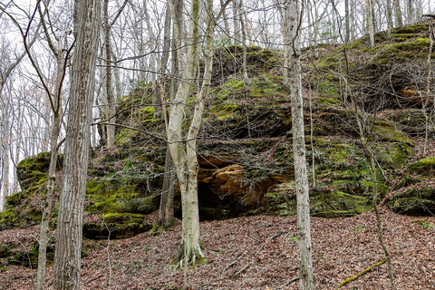 Cave entrance along hiking trail to ravine arch in yellow birch ravine nature preserve Indiana