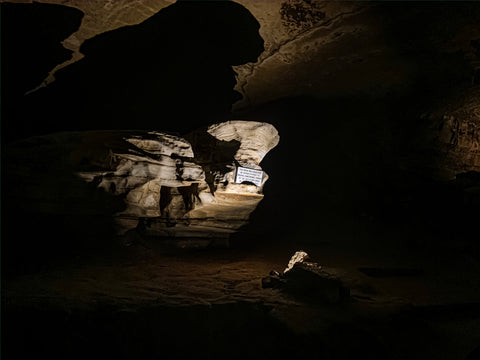 dripstone trail tour in marengo cave