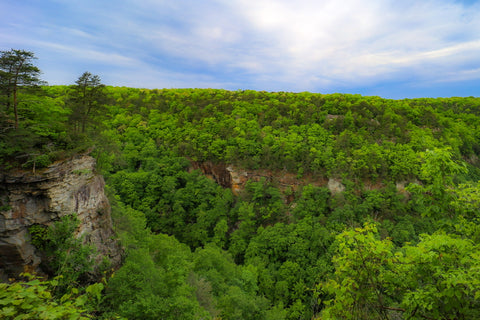 Views of cliffs in cloudland canyon along the overlook trail in cloudland canyon state park Georgia