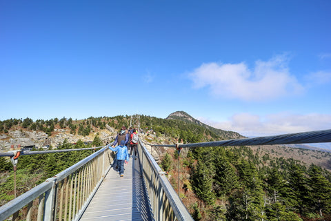 view from mile high swinging bridge on grandfather mountain