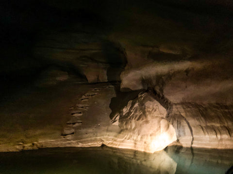 animals footprints on mud embankment within bluespring caverns indiana