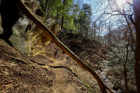 Peering down into boulder canyon along trail 9 in Turkey Run State Park Indiana