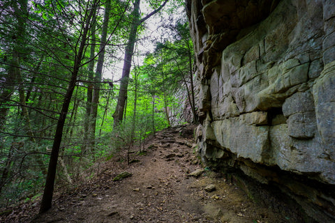 Sandstone bluffs along climbers loop trail in foster falls within south Cumberland State Park in Tennessee