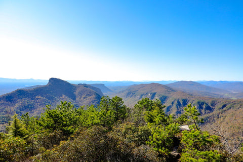 view of the linville gorge canyon from the summit of hawksbill mountain