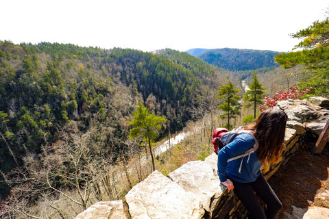 the gorge view in linville falls within the linville gorge wilderness
