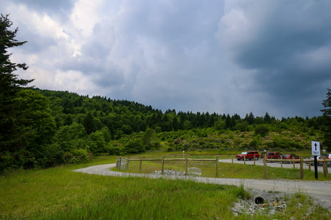 cabin creek trailhead in grayson highlands state park virginia