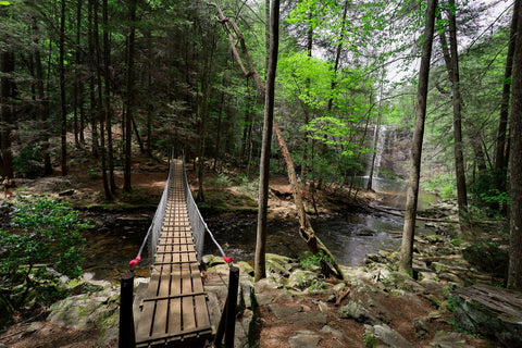 Suspension bridge across little gizzard creek to foster falls in south Cumberland State Park in Tennessee