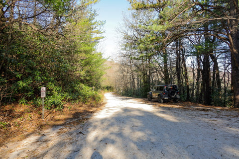parking area to hawksbill mountain trail