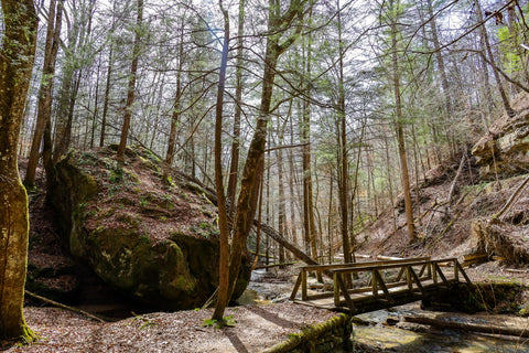 crossing whittleton branch to whittleton arch in red river gorge kentucky