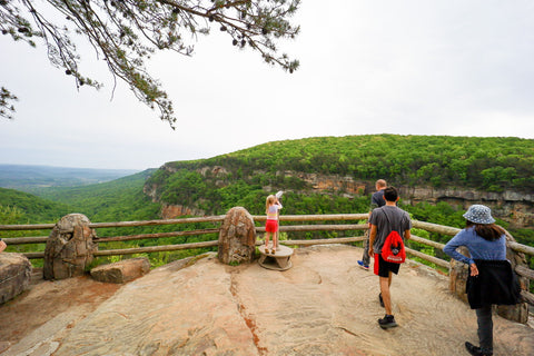 Families enjoying scenic views from the main overlook along the overlook trail in cloudland canyon state park Georgia