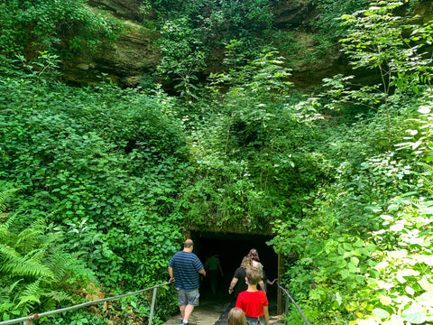 entrance into caves in bluespring caverns indiana