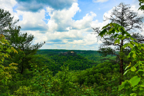 chimney top rock trail red river gorge