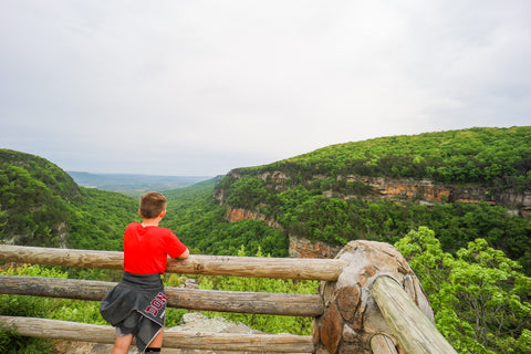 Panoramic views from the main overlook along the overlook trail in cloudland canyon state park Georgia