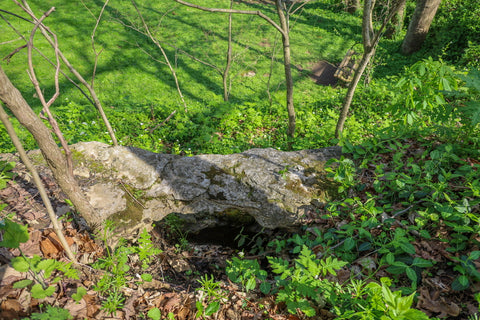 Top view of Cherokee Park Double Arch in Jefferson County Louisville Kentucky