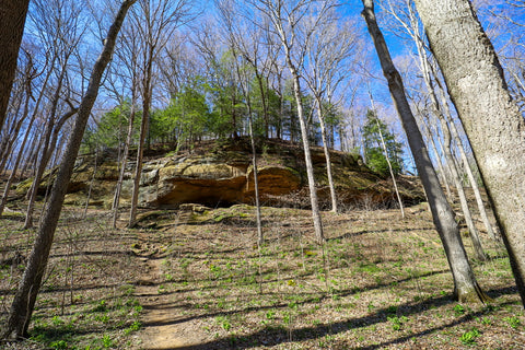 Massive rock shelter and cave along trail 5 in Turkey Run State Park Indiana
